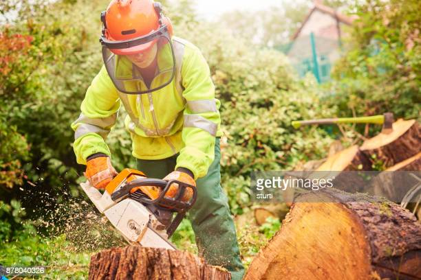 female tree surgeon