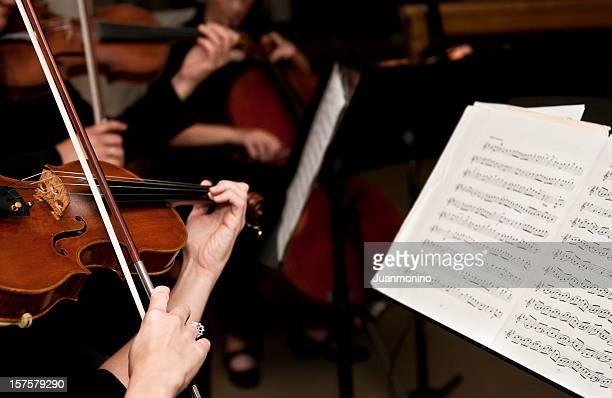 femmina violinists - pizzicare le corde di uno strumento foto e immagini stock