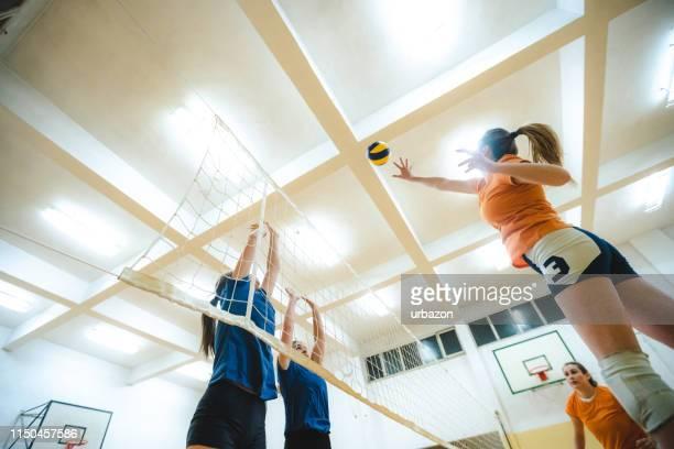 volleyballspielerin spioniert den ball - damen volleyball stock-fotos und bilder