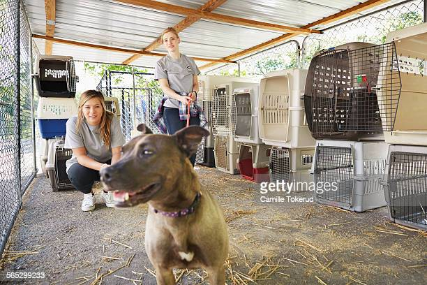 Female volunteers and a dog at an animal shelter