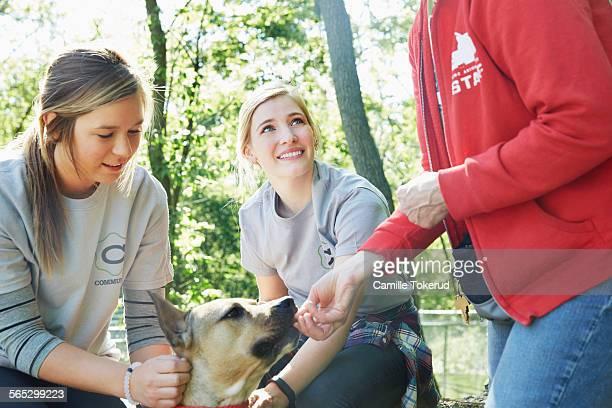 female volunteers and a dog - grupo mediano de animales - fotografias e filmes do acervo