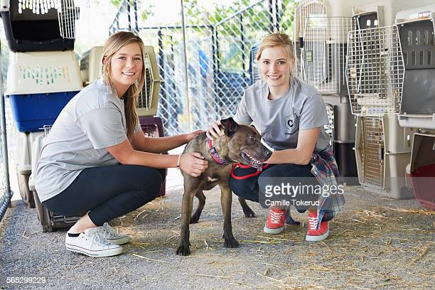 Female volunteers petting a dog in animal shelter