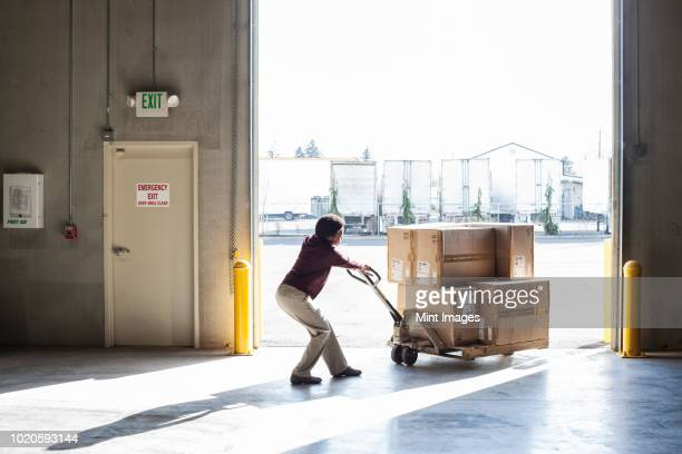 a female warehouse worker moving products in cardboard boxes by using a manual pallet jack in a distribution warehouse. - maschinenteil hergestellter gegenstand stock-fotos und bilder