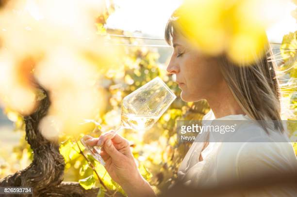 female winemaker with glass of white wine in vineyard - white wine stock pictures, royalty-free photos & images