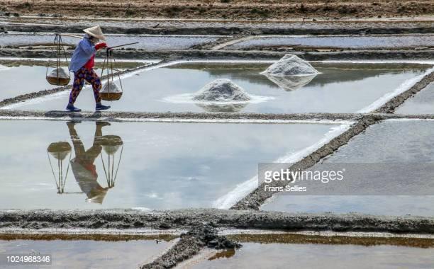 female worker carrying her baskets filled with salt at the salt ponds, vietnam - frans sellies stockfoto's en -beelden