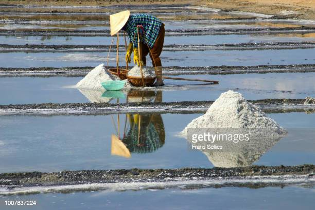 female worker filling her baskets with salt at the hon khoi salt ponds, vietnam - frans sellies stockfoto's en -beelden