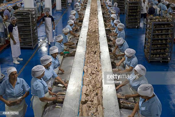 Female workers clean tuna steaks before placing them on a conveyer belt at the Grupo Pinsa SA processing plant in Mazatlan Mexico on Thursday Sept 29...