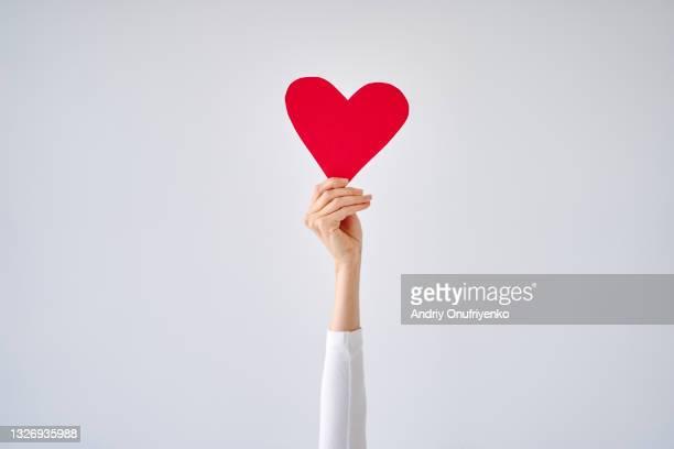 female's hand holding red heart against white grey background. - sociale rechtvaardigheid stockfoto's en -beelden