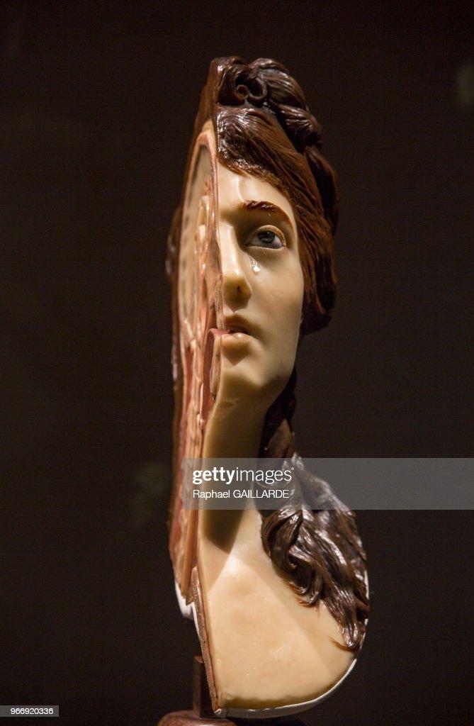 Femme En Larme femme à la larme ,cire du 18ème siècle exposée au musée de l'homme