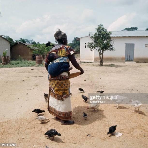 Femme nourissant ses poules Côte d?Ivoire.