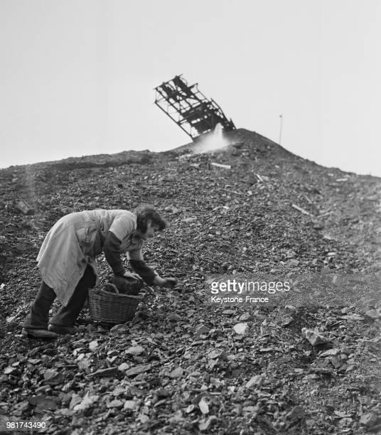 Femme ramassant du charbon pour sa consommation quotidienne dans le crassier dans une mine de la Sarre en France le 27 mars 1947