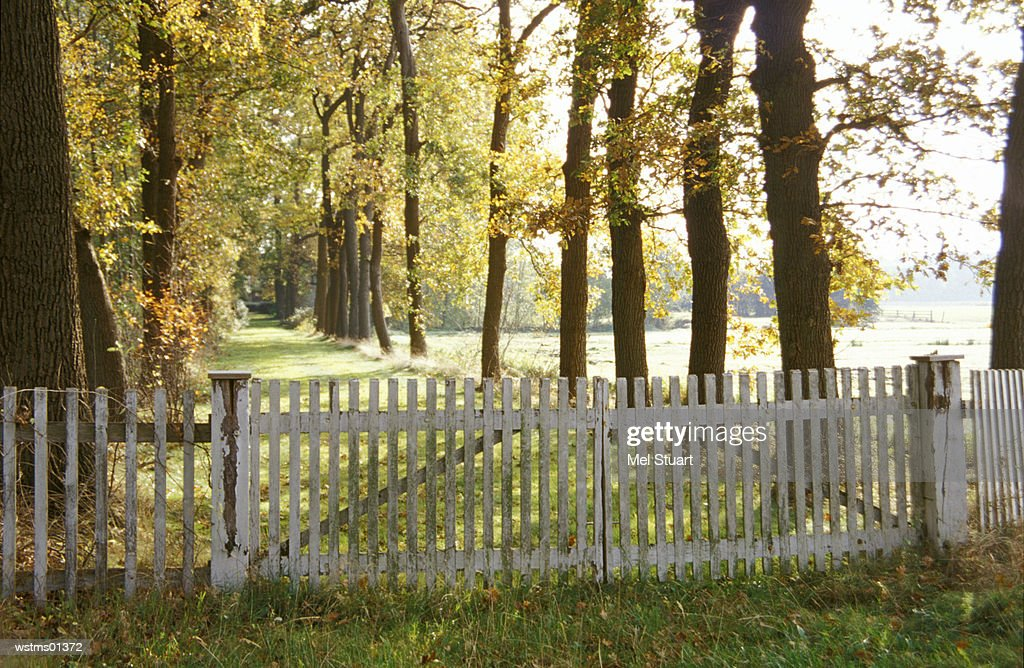 Fence blocking entrance to avenue, near Nortrup, Osnabrueker Land, Northern Germany : Stockfoto