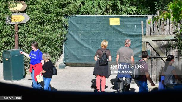 A fence blocks entry to the Etoscha lions' enclosure after the escape of the 2 lions at the zoo in Leipzig Germany 29 September 2016 One of the...