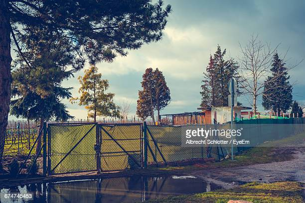 fence by trees growing on field against sky - albrecht schlotter stock photos and pictures