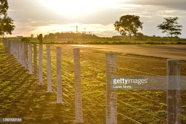 fence in a farm - rural area - golden hour stock pictures, royalty-free photos & images