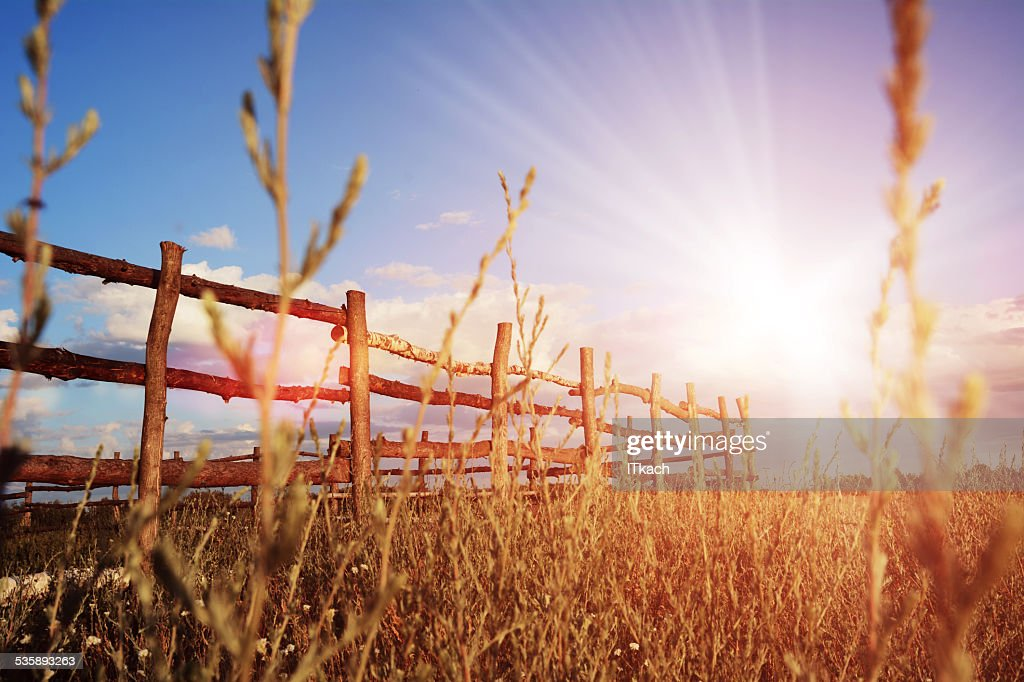 Fence in the green field under blue cloud sky : Stockfoto