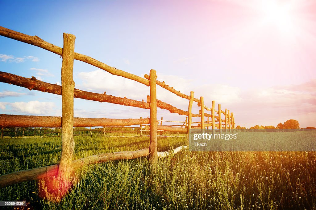 Fence in the green field under blue cloud sky : Stock Photo