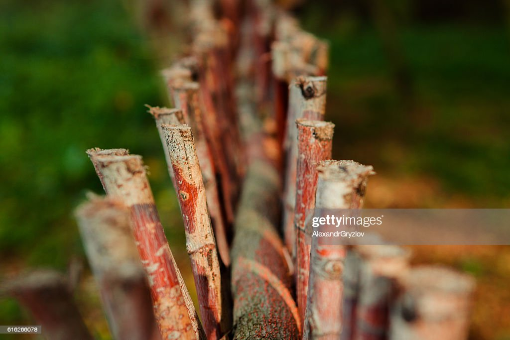 fence of twigs closeup : Stock Photo