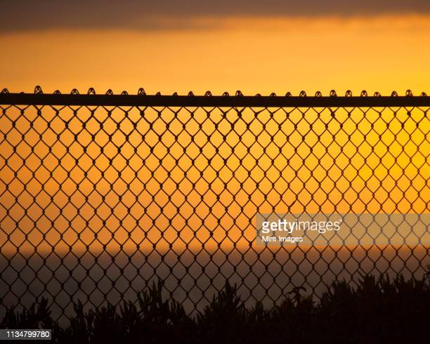 fence on beach - wire mesh fence stock pictures, royalty-free photos & images