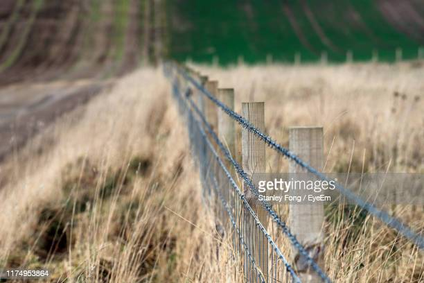 fence on field - agriculture stock pictures, royalty-free photos & images