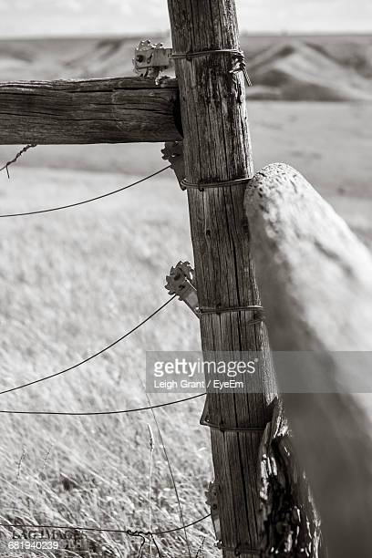 fence on field - leigh grant stock pictures, royalty-free photos & images