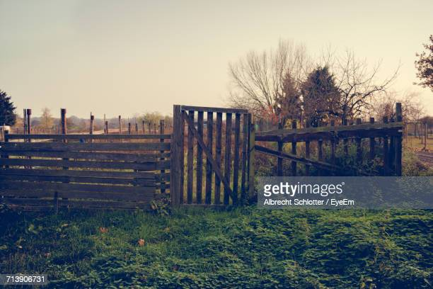 fence on field - albrecht schlotter stock photos and pictures