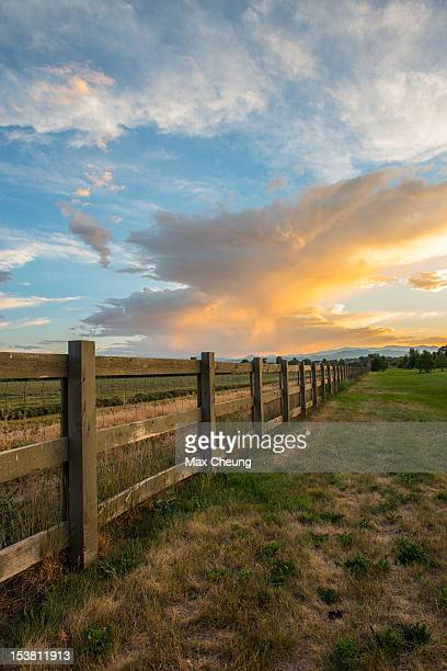 fence - fort collins stock pictures, royalty-free photos & images