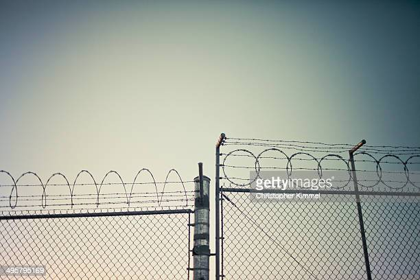 fence - barbed wire stock pictures, royalty-free photos & images