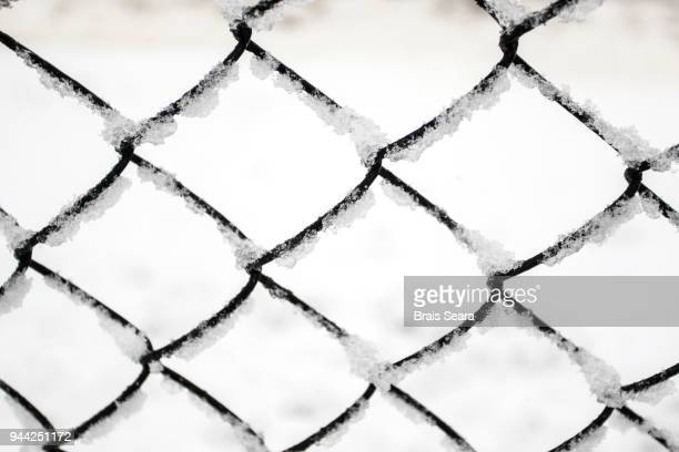 fence - auschwitz concentration camp stock pictures, royalty-free photos & images