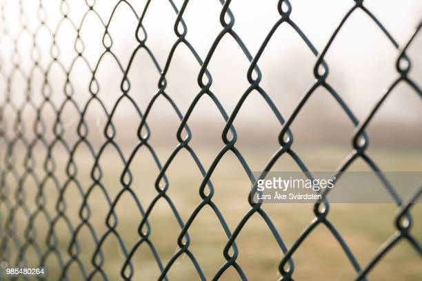 fence - wire mesh fence stock pictures, royalty-free photos & images