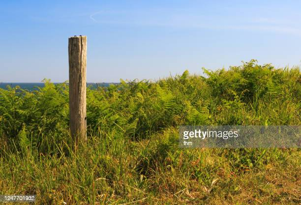fence posts in the countryside - 杭 ストックフォトと画像