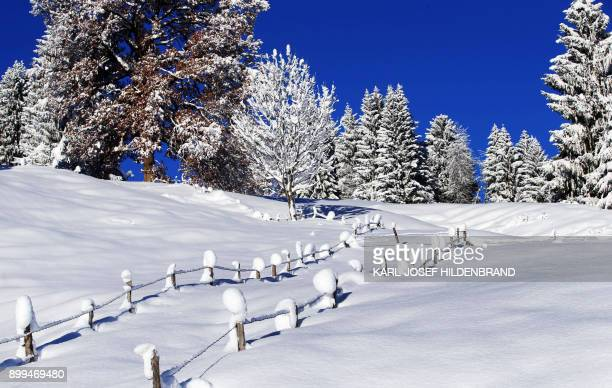 Fence posts protrude from the snow in the winter landscape near Gunzesried in the prealpine Allgaeu region southern Germany on December 29 2017 / AFP...