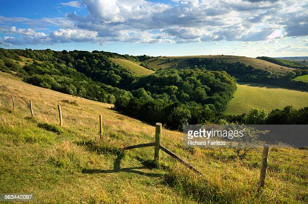 Fence through the South Downs