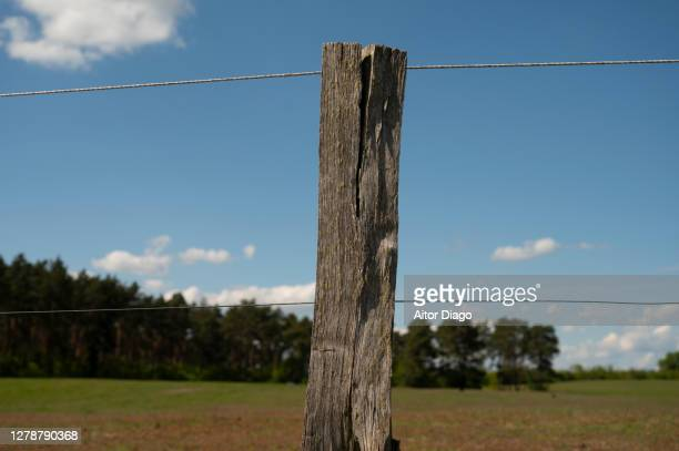 fence with a wooden post in the countryside. germany. - 杭 ストックフォトと画像