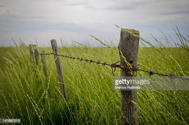 fence with barbed wire in patagonia - radicella stockfoto's en -beelden