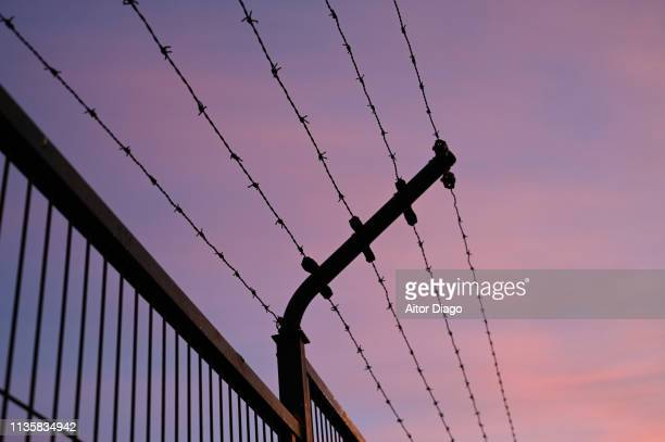 fence with metal cables with spikes - prison stock pictures, royalty-free photos & images