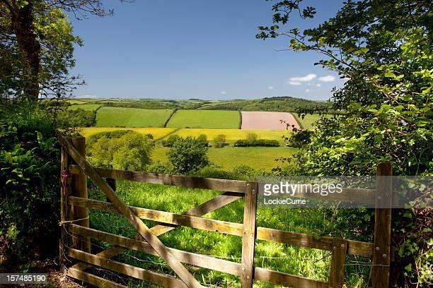 Fenced farmland in rural England