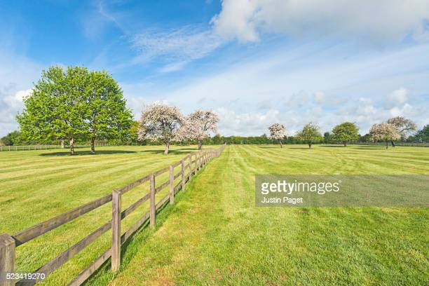 fenced field on summer's day - 宅地 ストックフォトと画像
