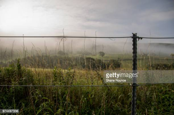 fenced in. - concentration camp stock photos and pictures