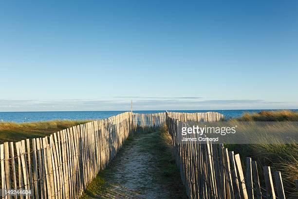 fenced path through dunes - golfe du morbihan photos et images de collection