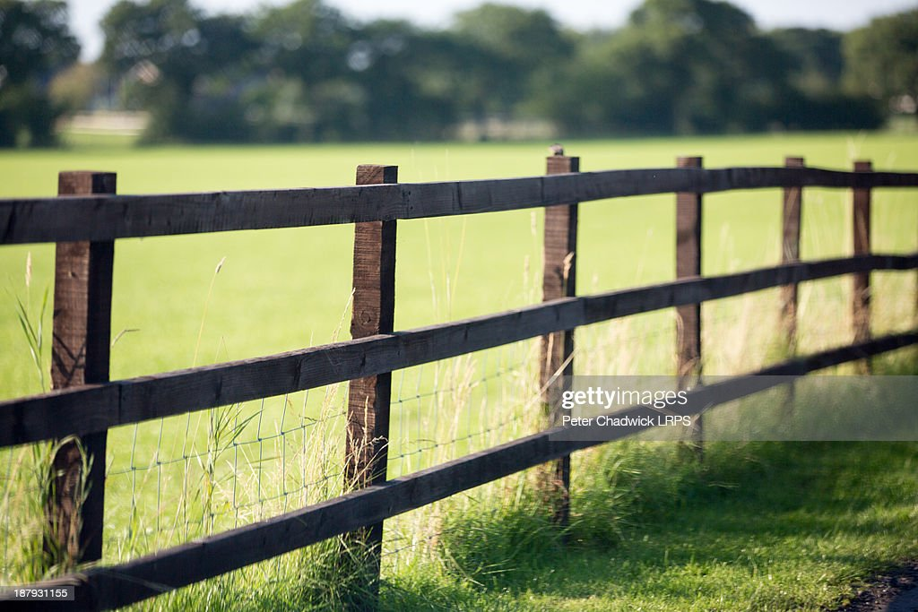 Fenceline : Foto de stock