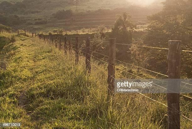 fences on sunset - crmacedonio stockfoto's en -beelden
