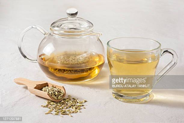 fennel seeds with fennel tea - ティーポット ストックフォトと画像