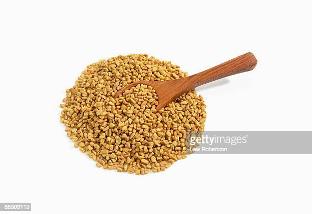 Fenugreek seeds with spoon