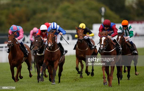Fergus Sweeney riding In The Bull win The British Stallion Studs EBF Maiden Stakes at Goodwood racecourse on September 23 2015 in Chichester England