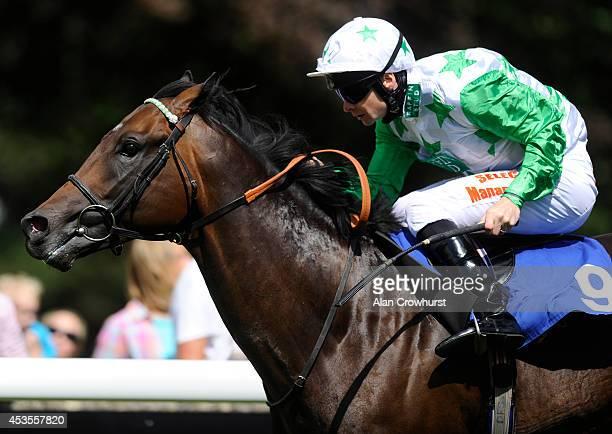 Fergus Sweeney riding Twilight Son win The British Stallion Studs EBF Molson Coors Maiden Stakes at Salisbury racecourse on August 13 2014 in...