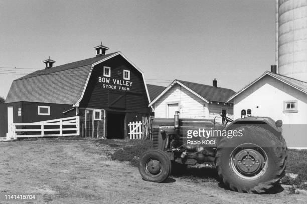 Ferme d'élevage dans la vallée Bow au Canada.