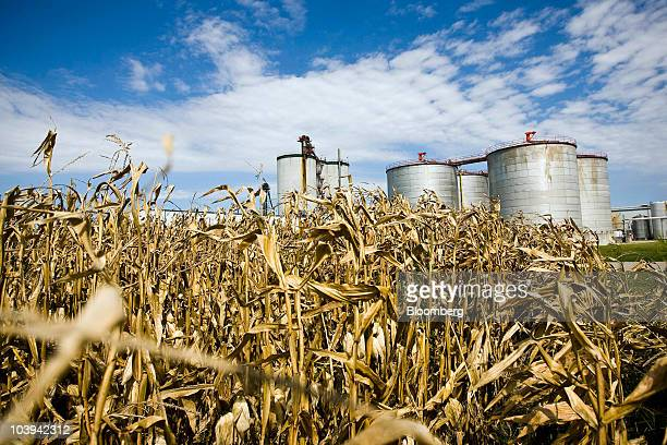 Fermentation tanks stand at the Mid Missouri Energy ethanol plant in Malta Bend Missouri US on Wednesday Sept 8 2010 US ethanol production increased...