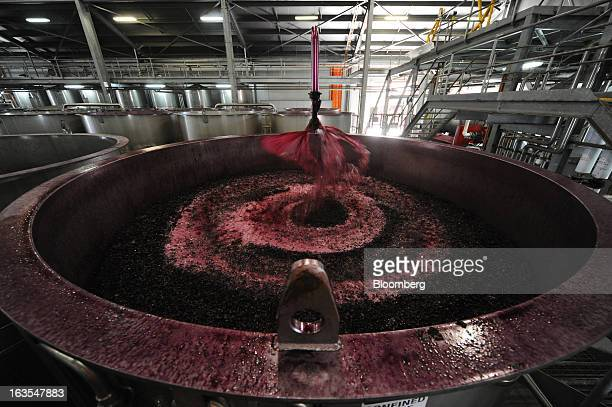 Fermenting red wine grape juice passes through a spraying device in a vat during primary fermentation at Treasury Wine Estates Ltd's Wolf Blass...