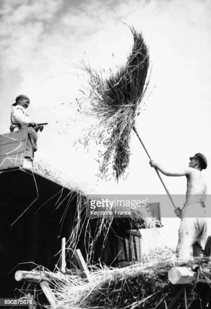 Fermiers en plein travail de récolte en Allemagne le 14 juillet 1939